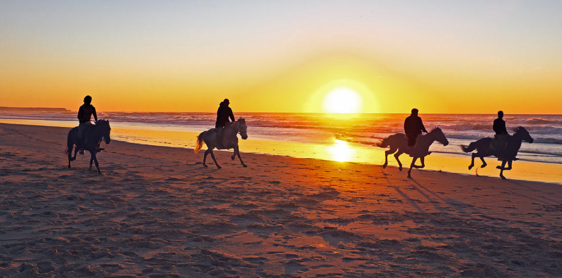 horse riding luxury island events